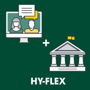 Hyflex icon